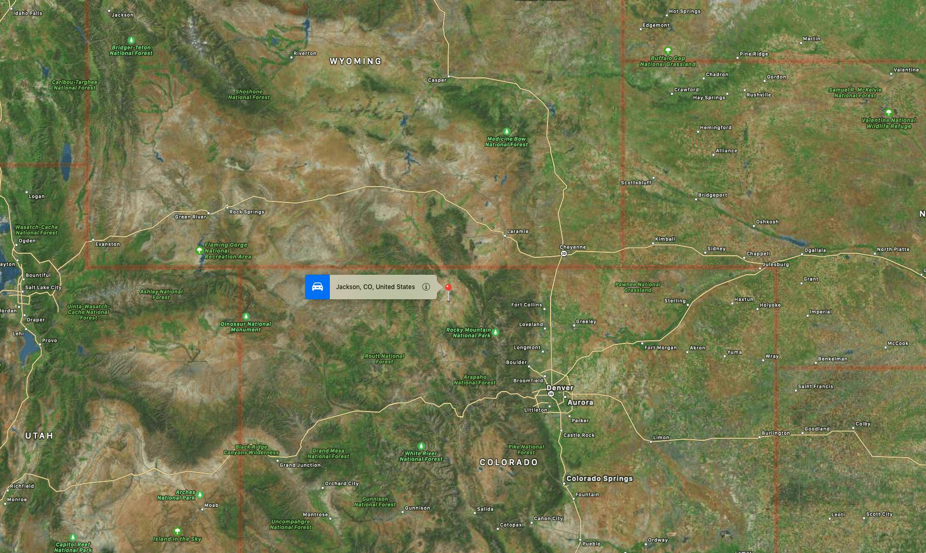 gray wolf, wolf, colorado, Wyoming