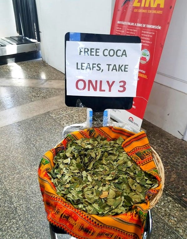coca leaves for altitude sickness, mountaineer, HAPE