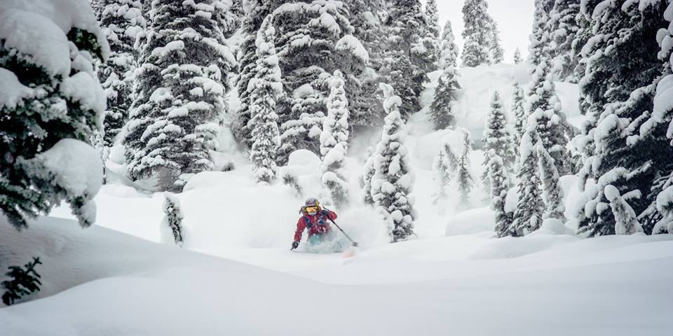 "Elyse Saugstad was the Freeskier Magazine ""2018 Female Skier of the Year."""