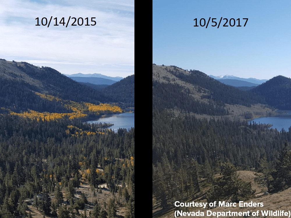 lake tahoe, california, state of the lake