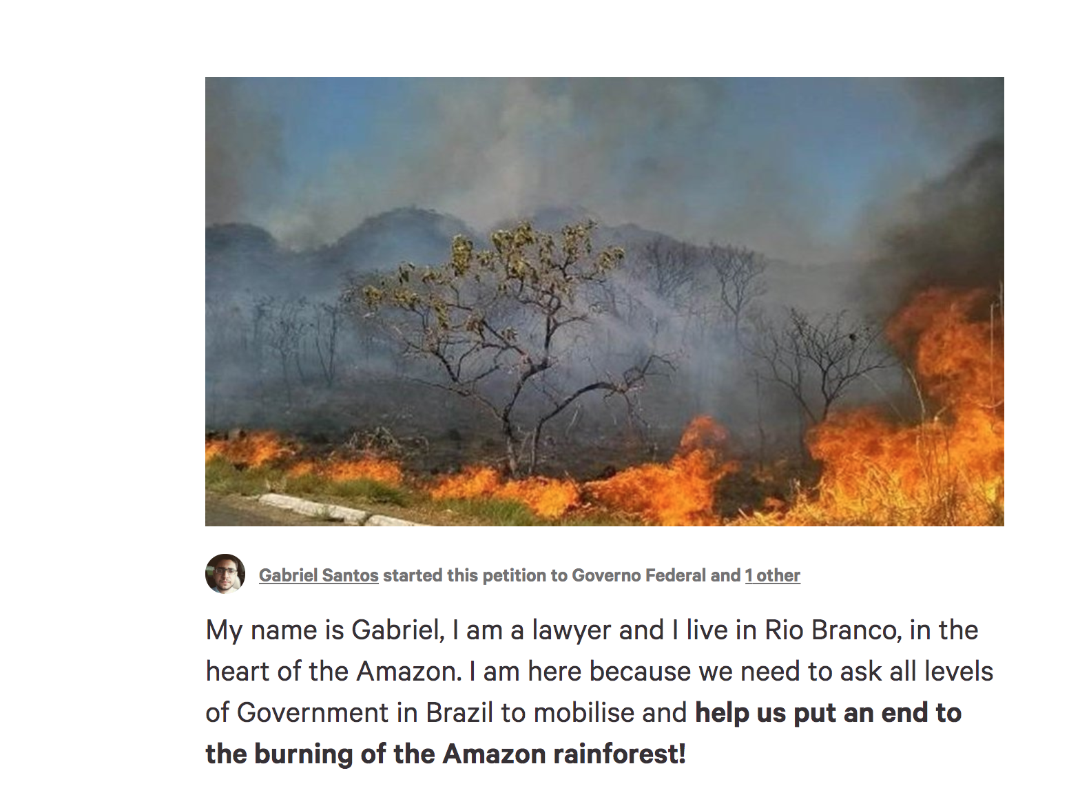 Stop the Amazonian wildfires