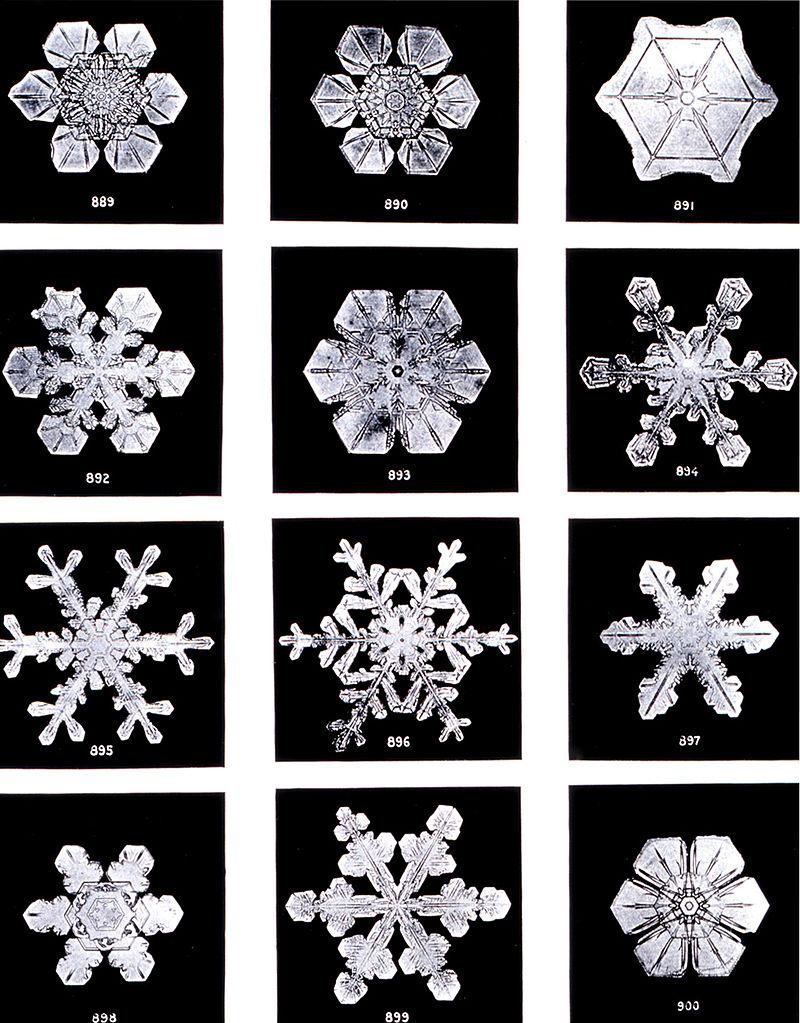 Bentley called snowflakes 'ice flowers.'