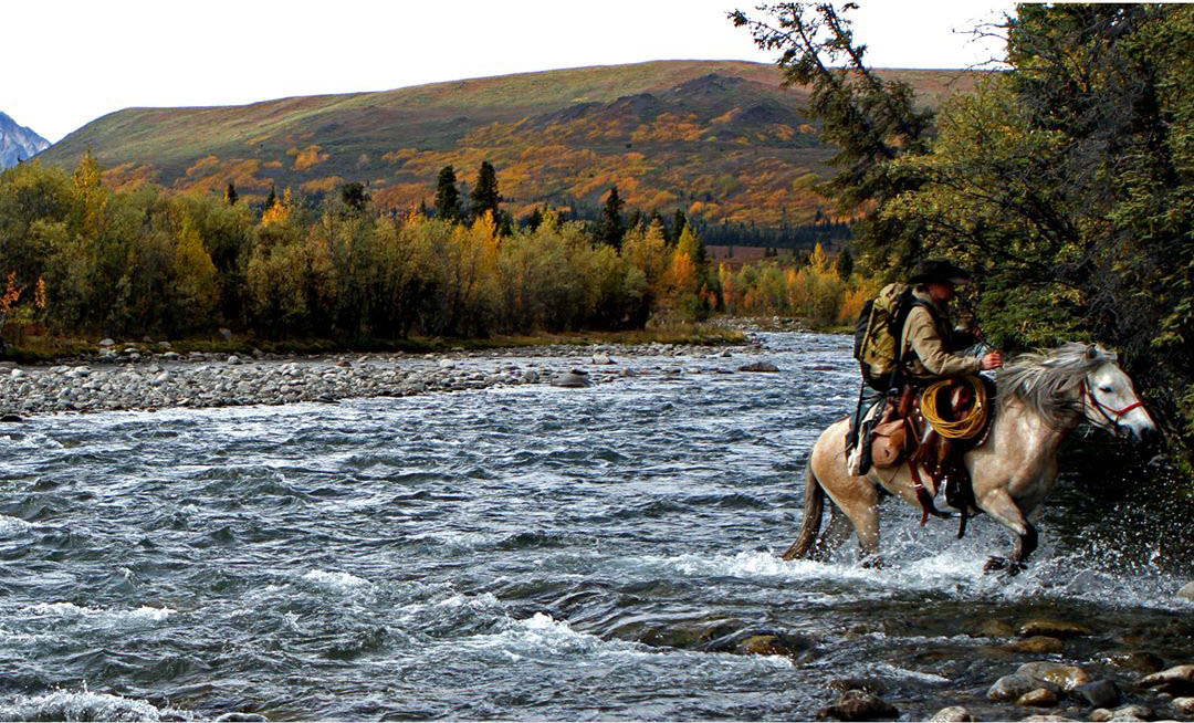 backcountry, river, nature horse, hunting, fishing, anglers