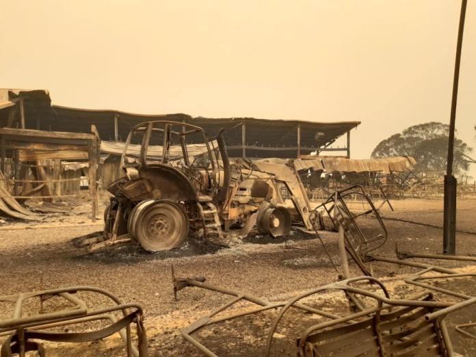 Selwyn, australia, nsw, wildfires