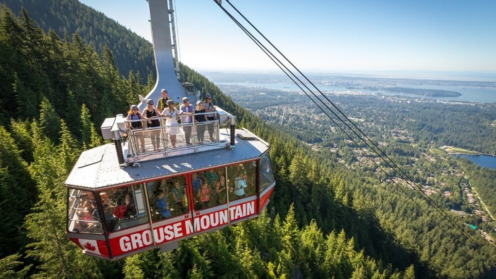 Grouse Mountain offers skiing, ziplining, wildlife reserves, lookouts, and more.