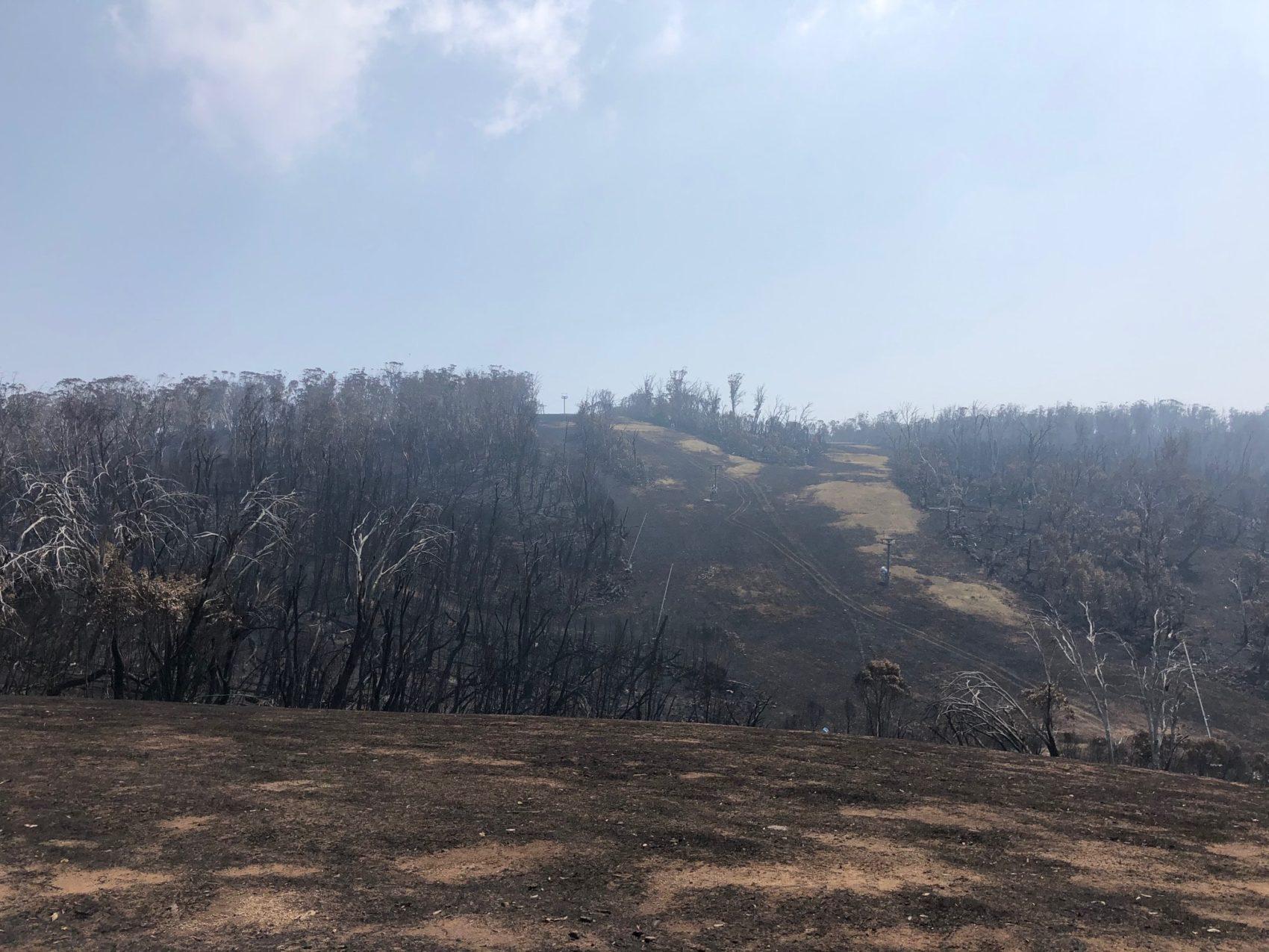 australia, bushfires,