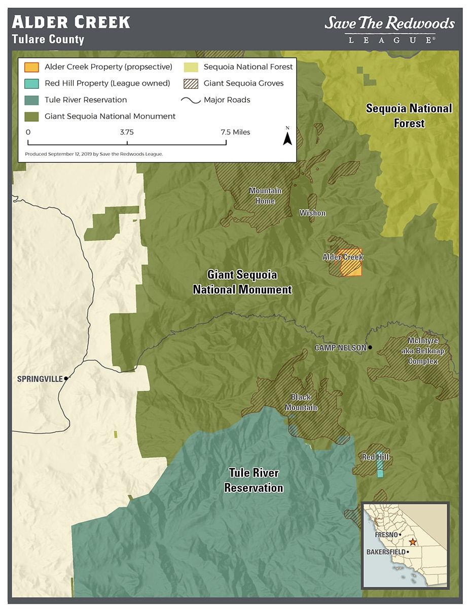 Giant Sequoia Location