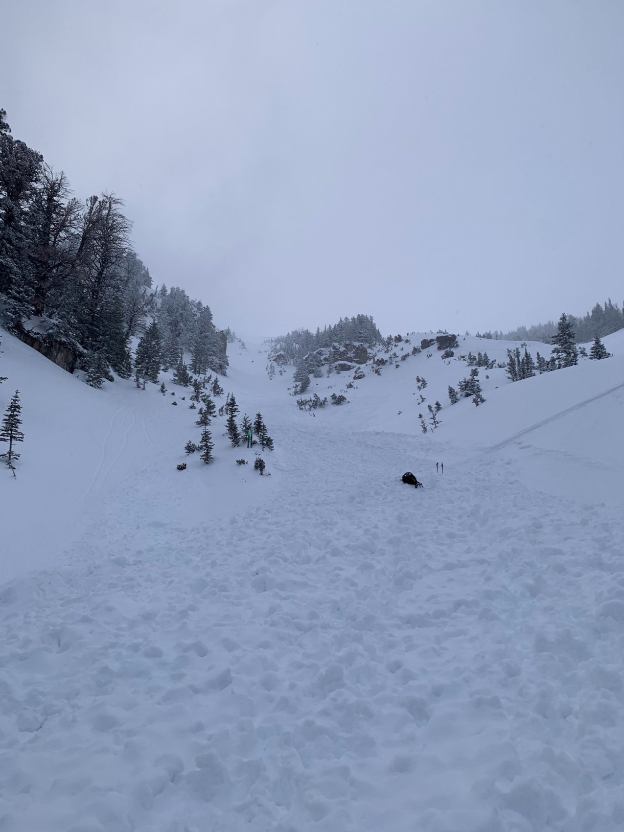 avalanche, Taylor Mountain, Wyoming