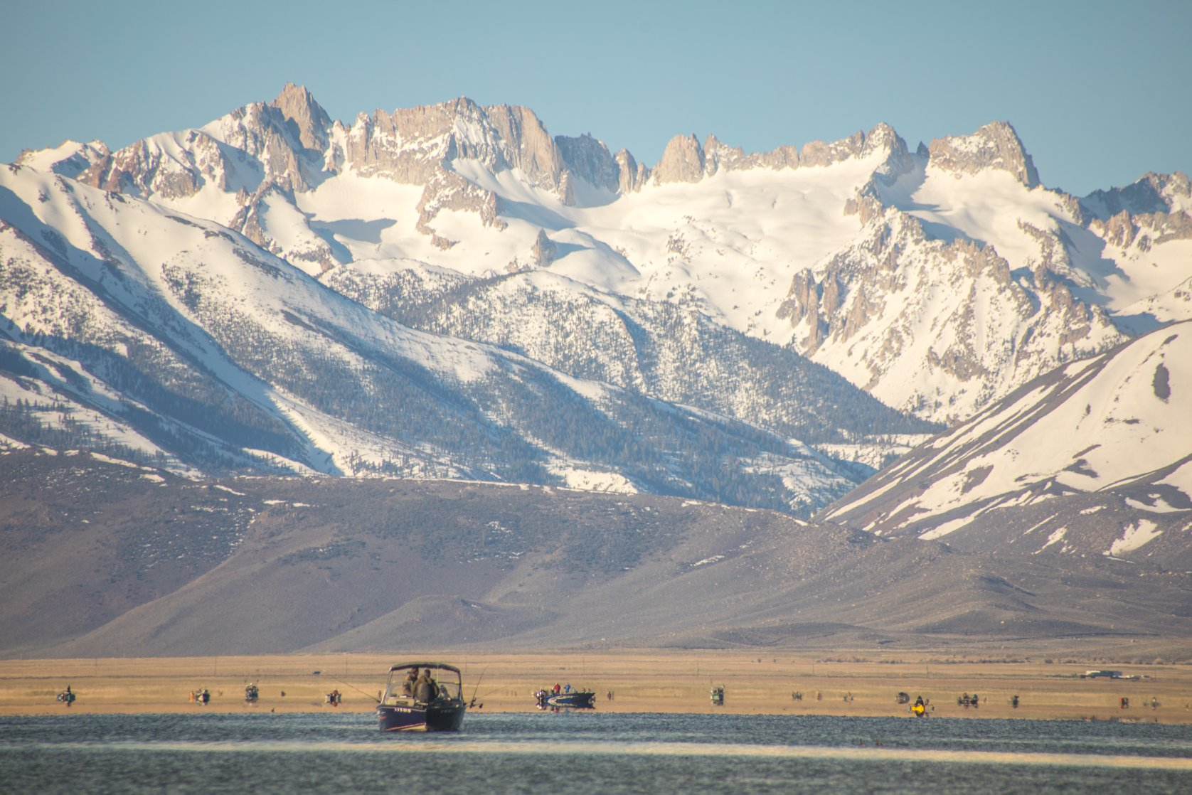 fishers, postponed, mono county, California, eastern Sierra,