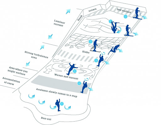 diagram, avalanche survival