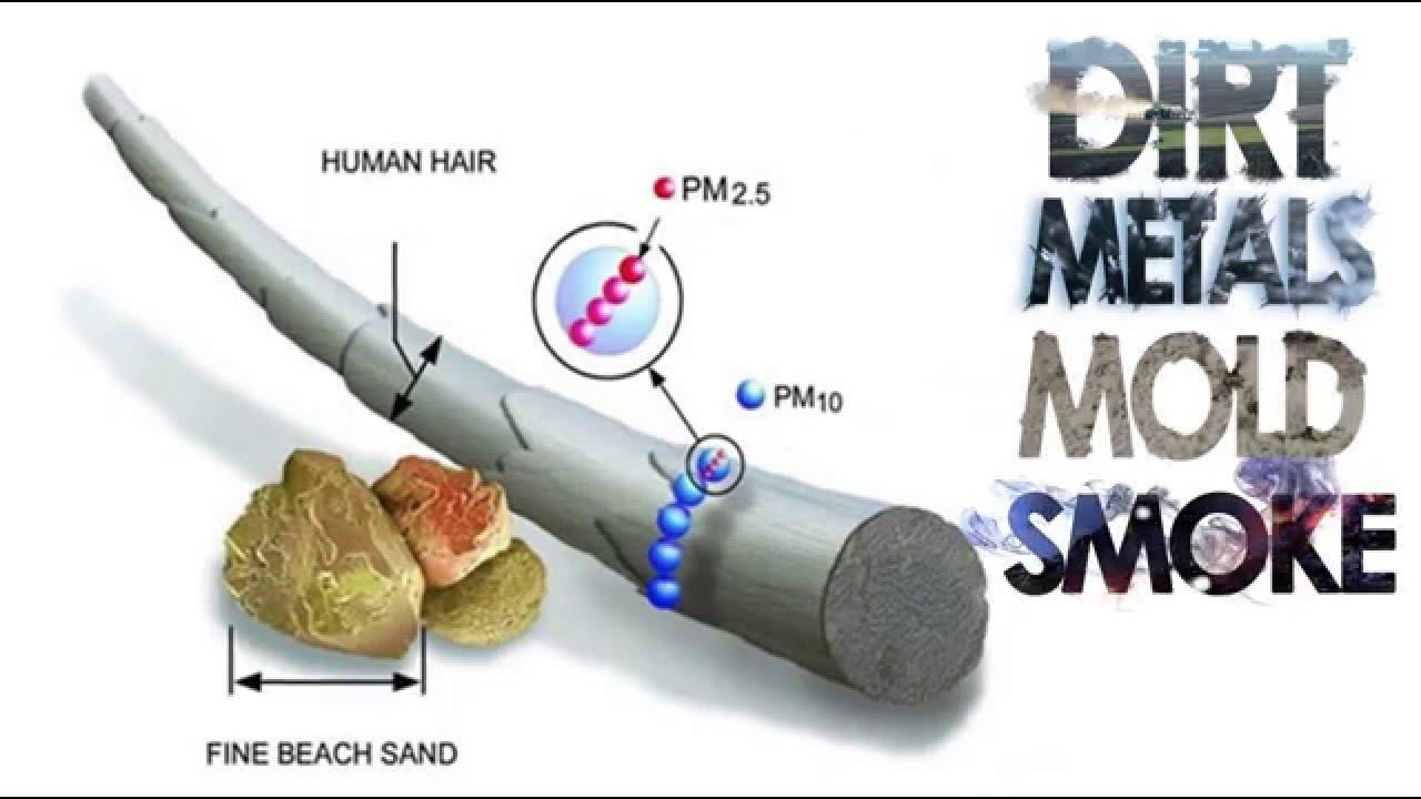 dirt, metals, mold, smoke, Alzheimer's, alzheimer's