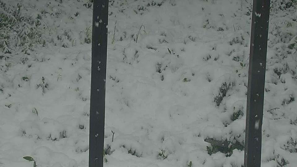 utah, snow, juneuary
