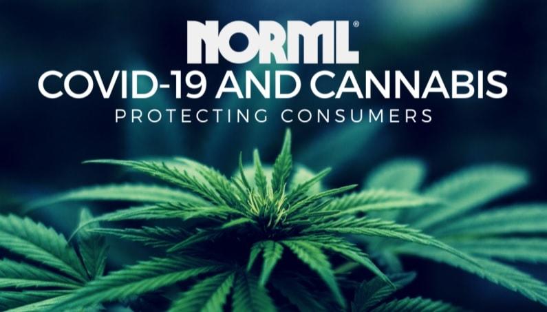 Covid-19, Cannabis, Norml