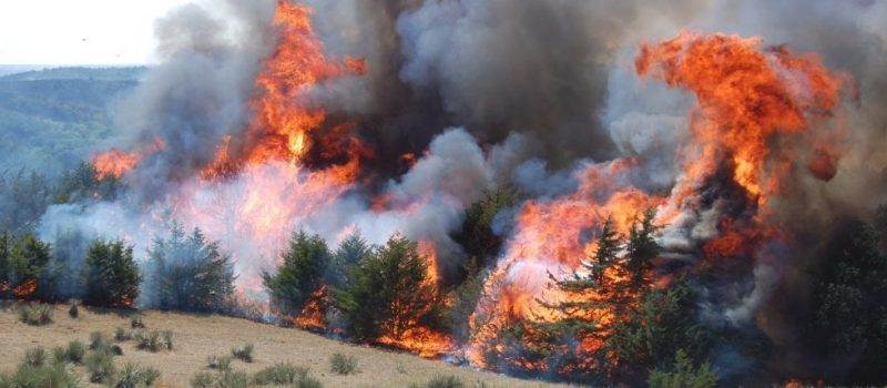 Weather affects on wildfires