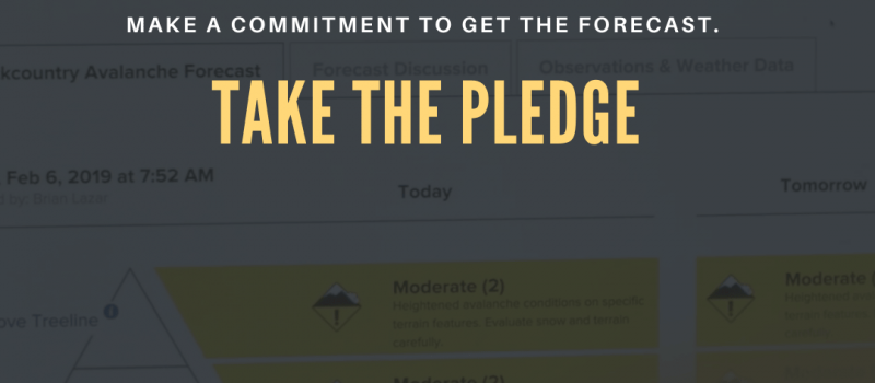 CAIC pledge