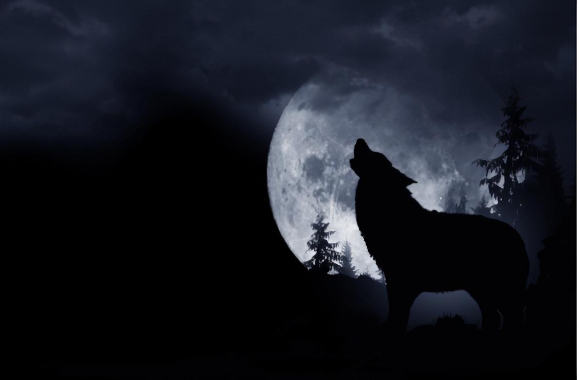 full moon, halloween,