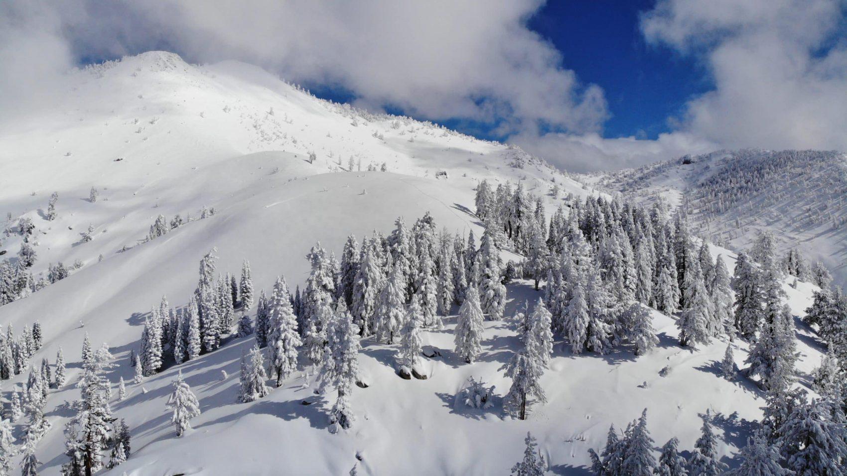 Tahoe backcountry alliance