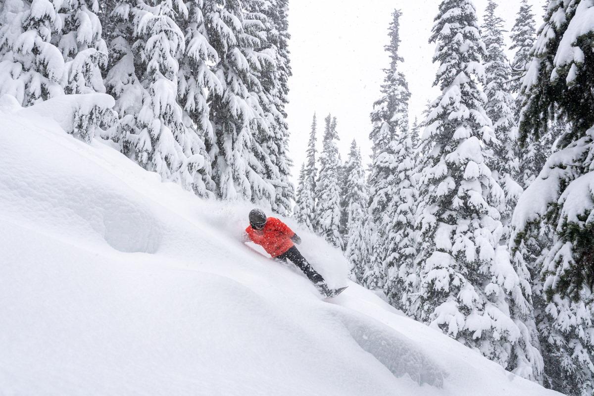 whistler, Snowboarder deep Powder