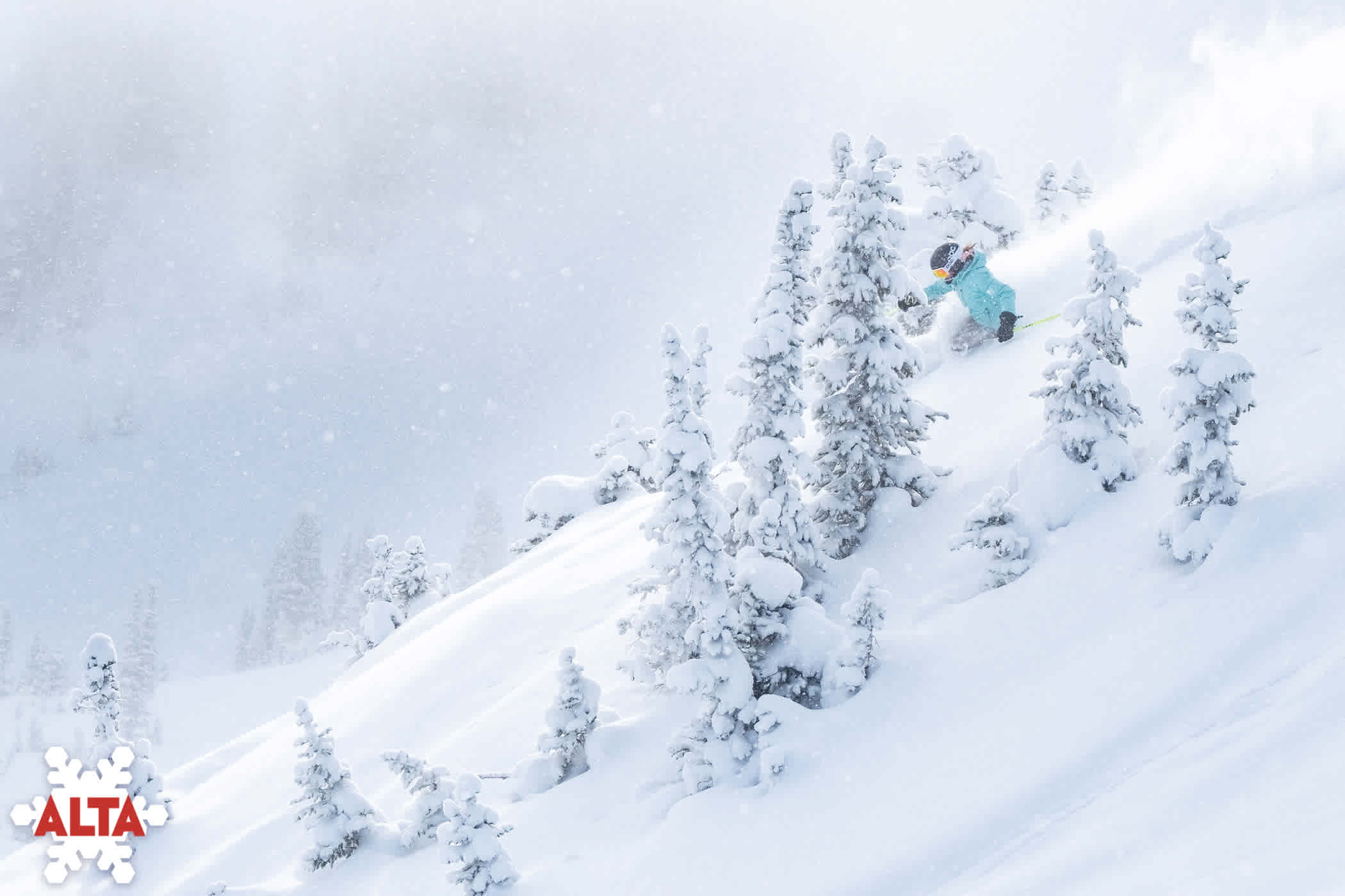 alta ski area tree skiing