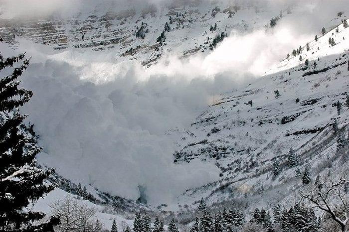 Avalanche Alpine Meadows