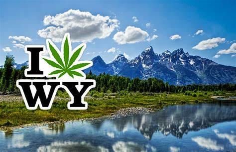 Wyoming cannabis