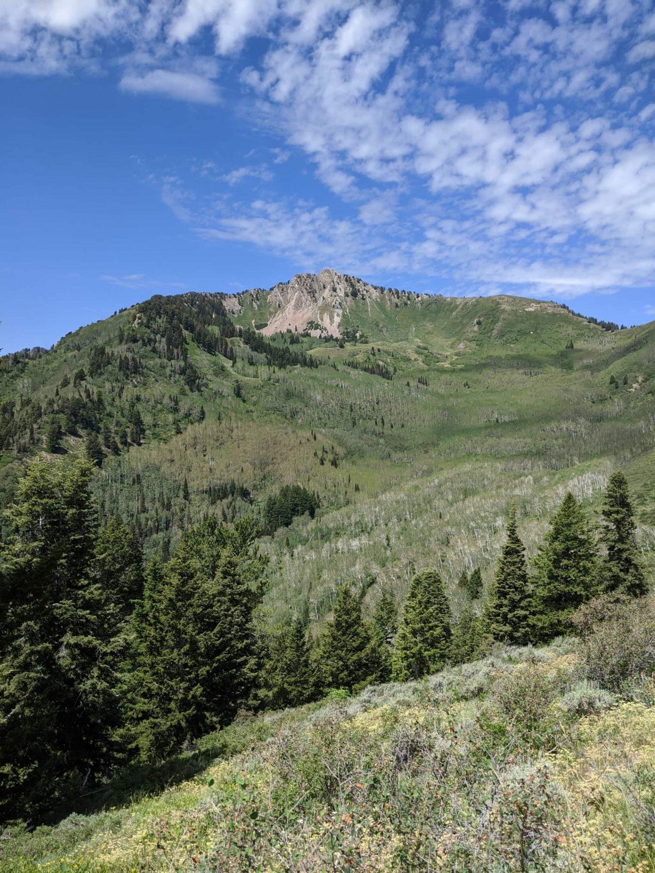 mount Raymond, Utah,