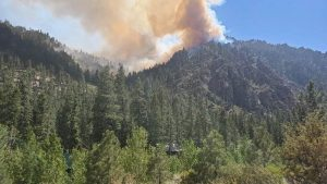 Tamarack Fire, california,