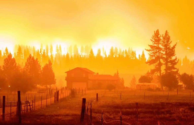 tamarack fire, california