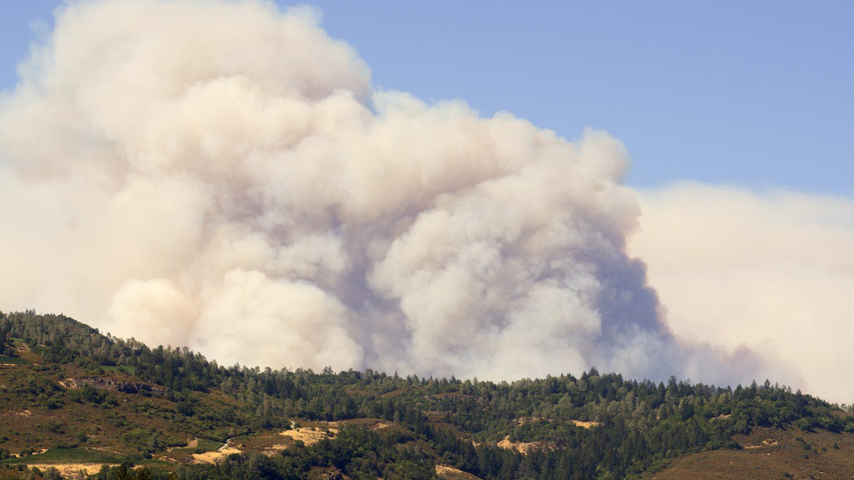 smoke, wildfire,