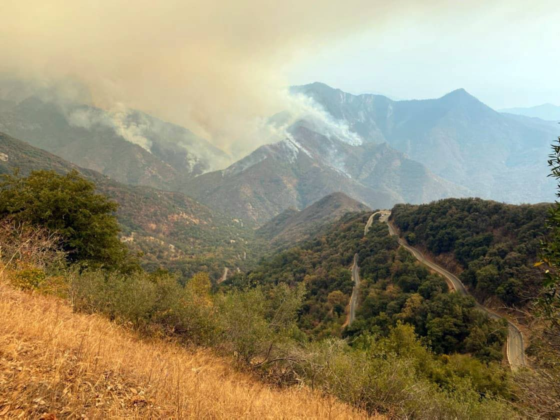 sequoia national park, wildfire,