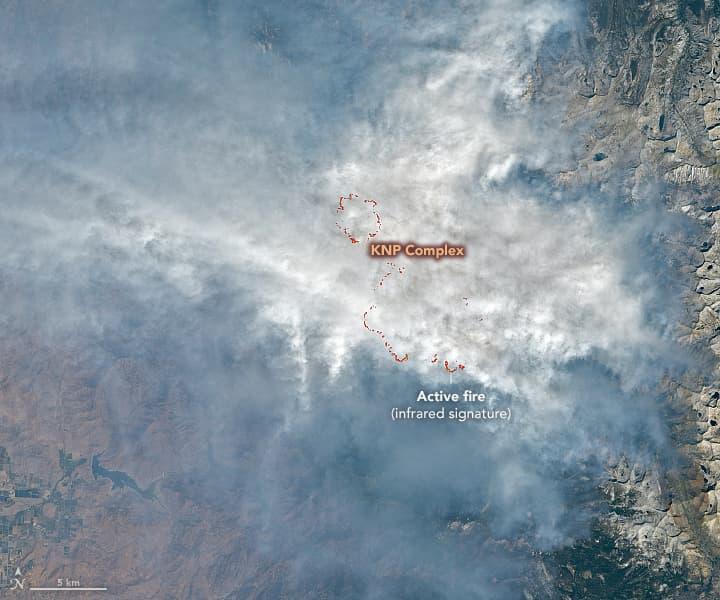 sequoia, wildfire, knp complex